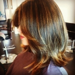 in-salon-highlights